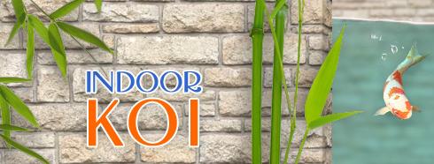 indoor_koi_banner